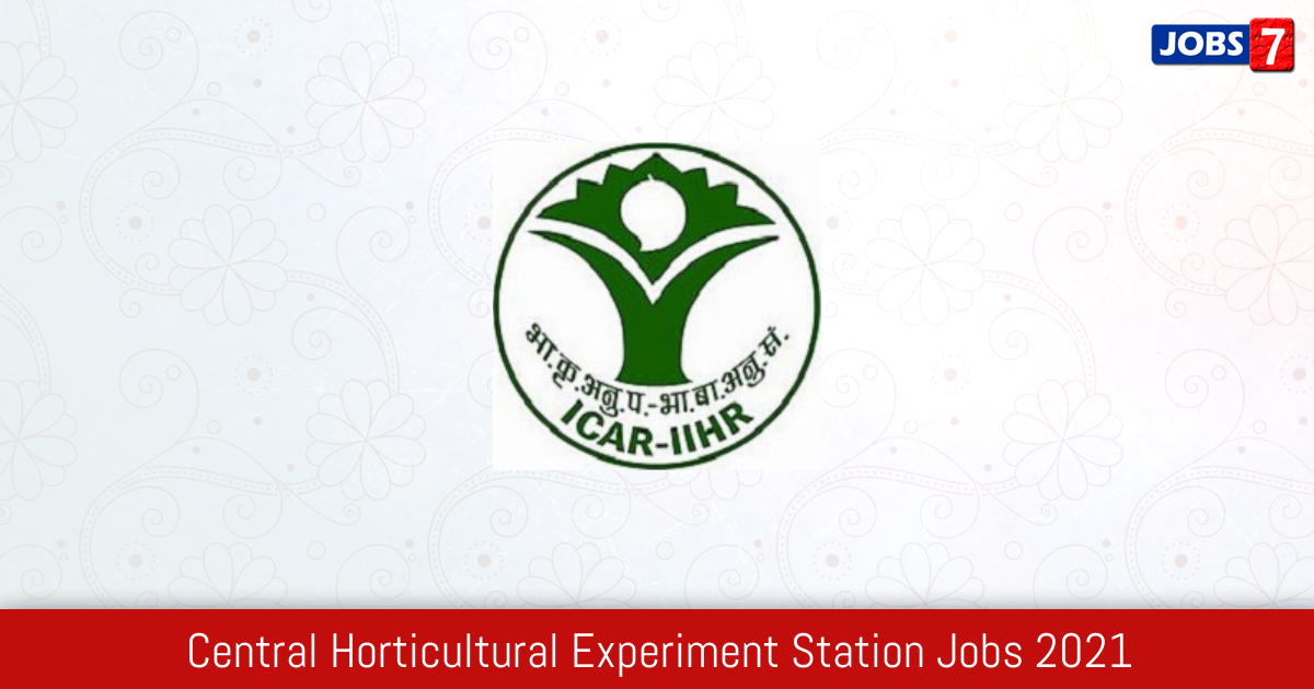Central Horticultural Experiment Station Recruitment 2021:  Jobs in Central Horticultural Experiment Station | Apply @ www.iihr.res.in