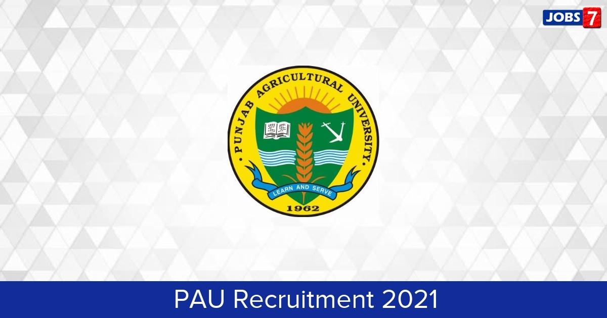 PAU Recruitment 2021:  Jobs in PAU | Apply @ www.pau.edu