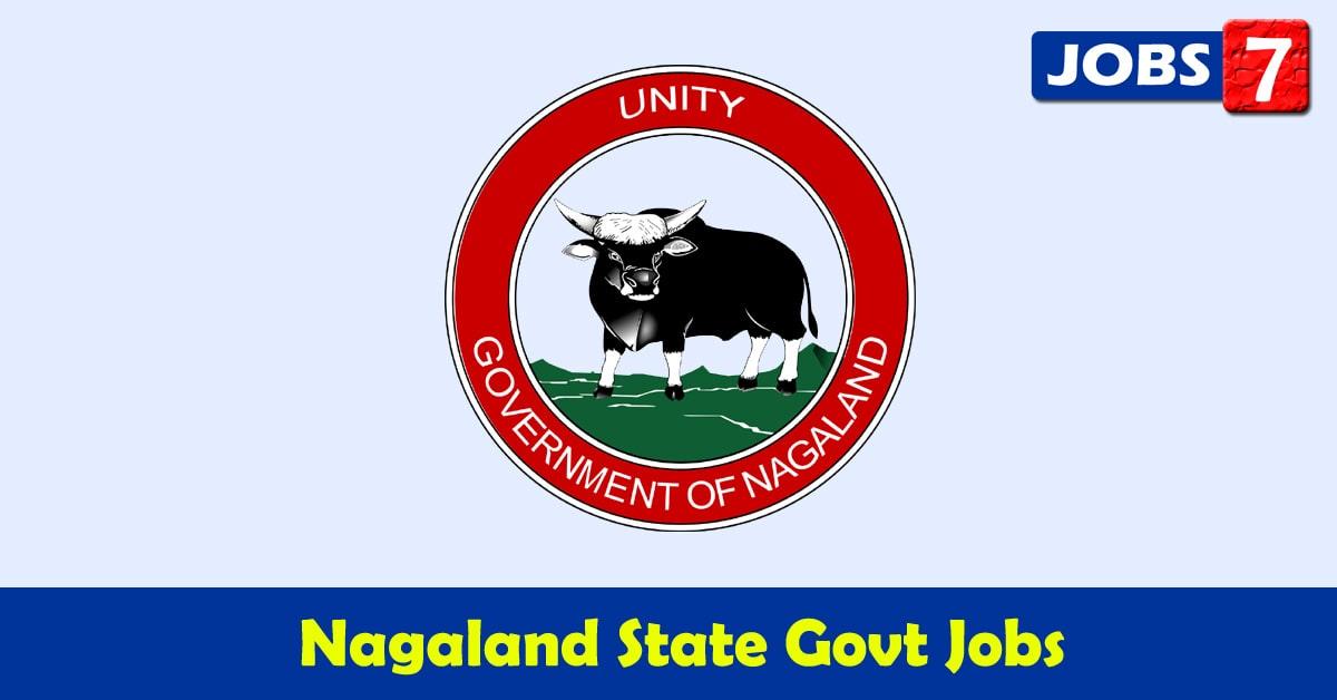 Nagaland Govt Jobs 2021 - 10810 Job Vacancies